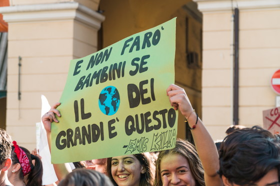 Fridays for Future - 8